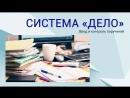 Ввод и контроль поручений системы электронного документооборота «ДЕЛО»