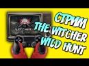 В Вызиму! Witcher 3 ( 1)