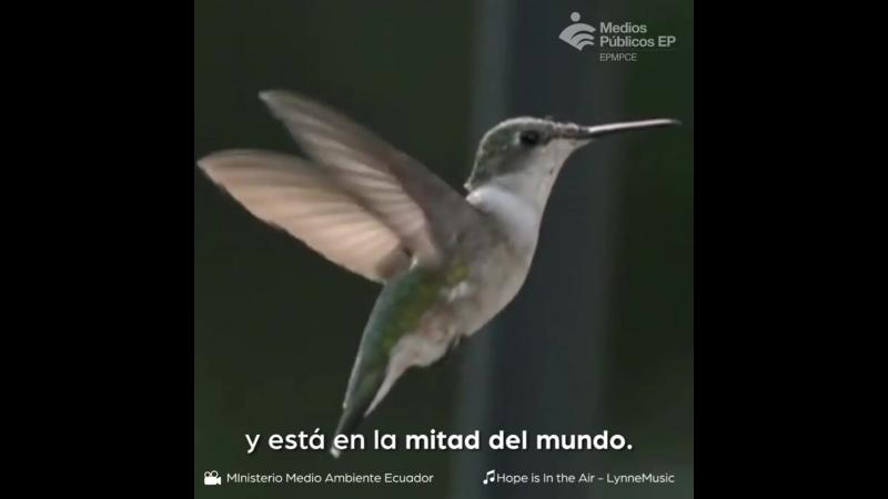 Ei Ecuador