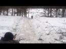 Неудачная охота на кабана 360p.mp4