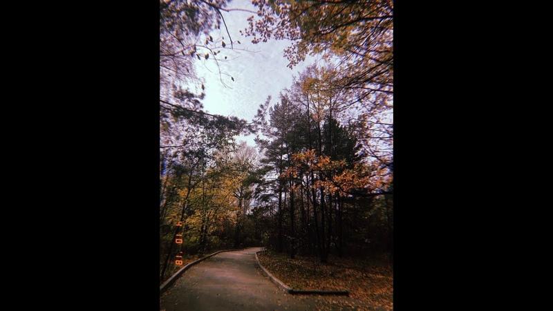 САНЯ ЧЕРВОНЕЦ - Рыжая осень 2018год ПРЕМЬЕРА ПЕСНИ И КЛИПА