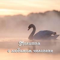 Анкета Александр Вершинин