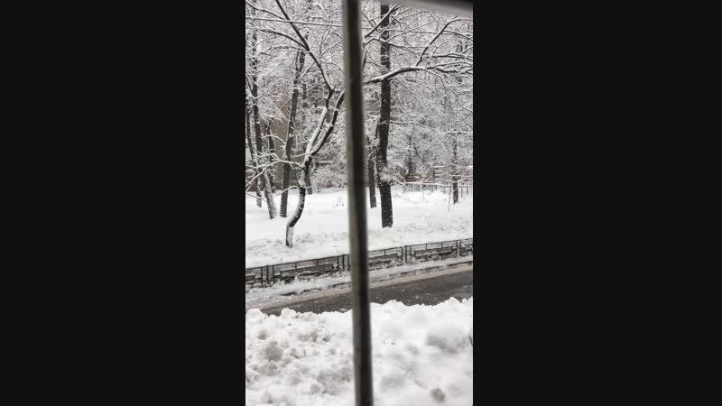 Снежок за окном 😍