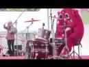 Бешеный хомяк барабанщик