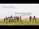 Fox Hunting Ireland