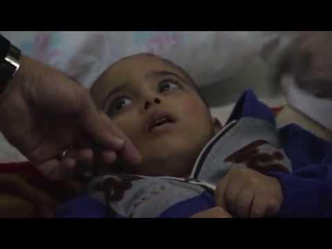Gaza Una mirada a los ojos de la barbarie
