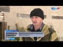 Из каких районов Алтайского края в Барнаул везут новогодние ёлки Barnaul22