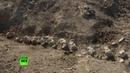 Археологи работают на месте обнаружения скелета древнего кита в Крыму