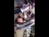 Террористы ХТШ*(запрещено в России), издеваются над человеком который украл килограмм меди из гаража, но плохой всё равно Ассад.