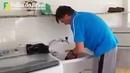 Bolsonaro lavando roupa no tanque e colocando no varal - Ilha de Marambaia - 23/12/2018