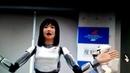 Роботизация дома и в инете в США Бесцеремонный робот вышел из под контроля и вырубил компьютер