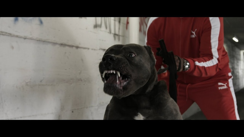 Kontra K feat. Ak Ausserkontrolle Gzuz - Setz dich (Official Video)