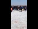 Лорд вл.Марат 18.03.2018 г. стенка ВКО-Россия