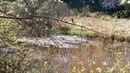 Устиновские известняки Устиновский каньон