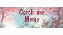 Catch me Meme