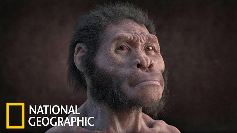Обезьяноподобный человек. В поисках первого человека (National Geographic)