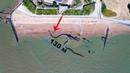 ШОК! Гигантская ЗМЕЯ выползает на побережье Франции.