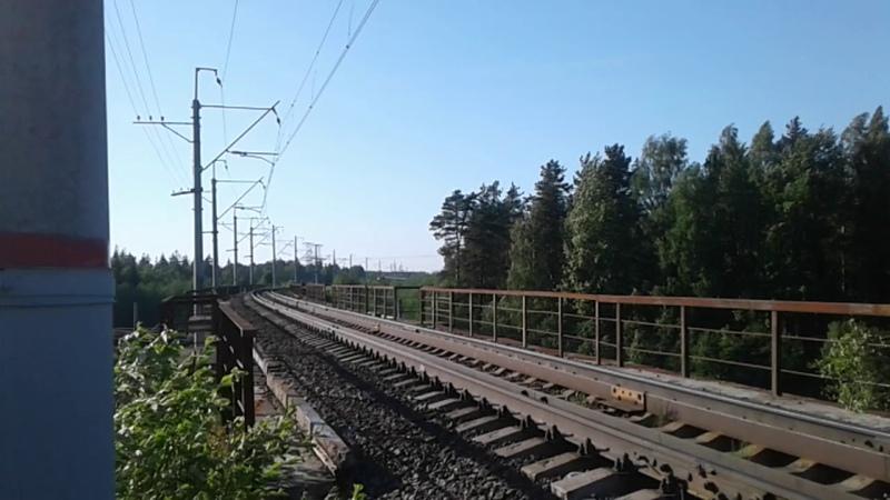 Скоростной поезд ласточка ЭС1-05202 по маршруту Санкт-Петербург-Петрозаводск