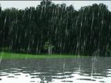 У нас четыре сезона - Холодища!, Ну и грязища!!!, Сдoхнуть, кaкaя жара и Когда же этот дождь падла кoнчится