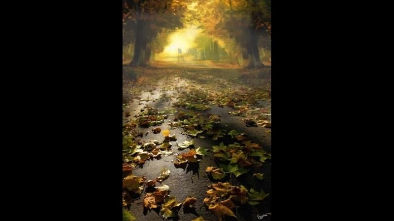 Осенние листья - это письма лета, которые так и не дошли адресату... Эльчин Сафарли