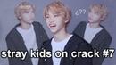 Stray kids on crack 7 chris cullen