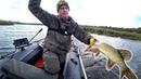 Минус 4 воблера, но рыбалка удачная получилась! Ловля щуки на воблеры осенью! Незнакомый водоем 3