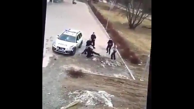 Die schwedische Polizei erkennt an, dass sie nicht in der Lage ist, die von den Flüchtlingen verursachten Ausbrüche der Gewalt z
