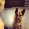 """Светлана Брюханова on Instagram: """"Реакция на слова я люблю тебя . норанорис мухтар любовь светланабрюханова"""""""