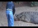 Santuario dos Crocodilos