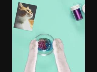 Котик делает себе подарочек 🙀