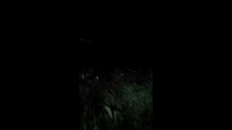 зарыбление водоема.07.09.2017г.