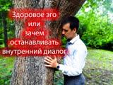 Здоровое эго или Зачем останавливать внутренний диалог Георгий Половцев