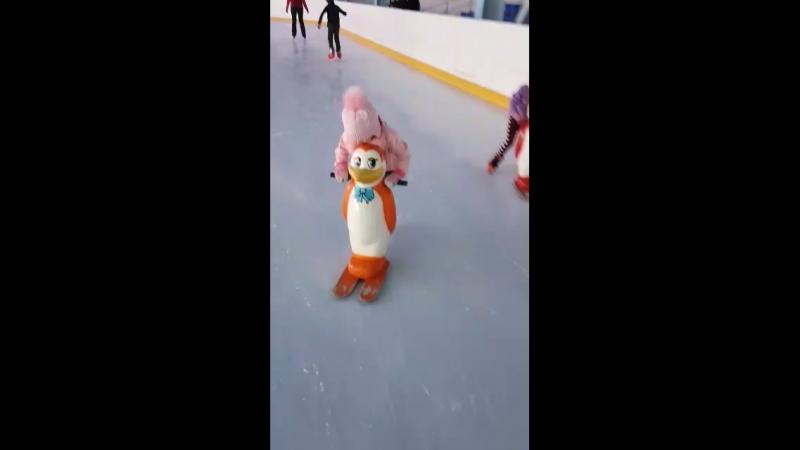 Доча учится кататься при помощи пингвина