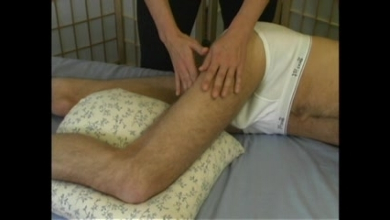 Thomas Myers - Massage. Myofascial Release. Rolfing (Часть 6) - Lecture 9