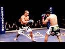 ★ JOSE ''Scarface'' ALDO Highlights Knockouts ᴴᴰ