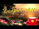 Удачного четверга! С добрым утром! Хорошего дня!