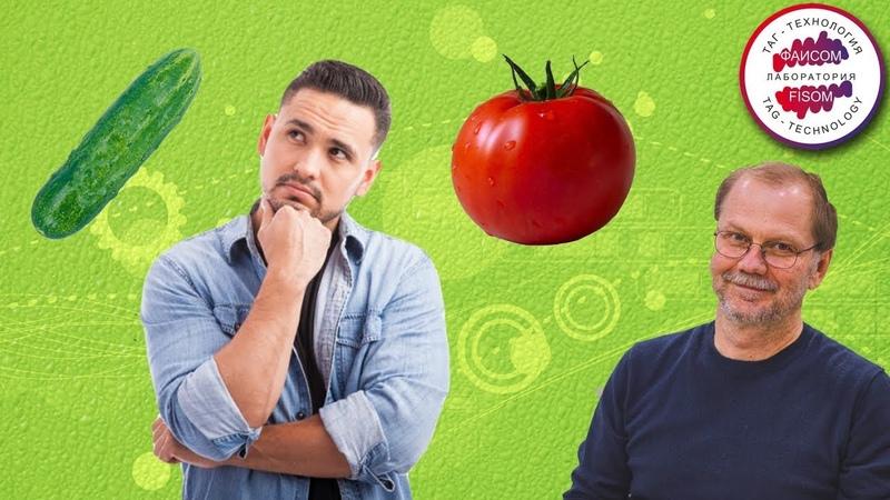 Огурец или помидор ? Ты доводишь дела до конца ? Почему мы начинаем дела и бросаем ? Достижение цели