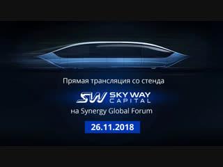 Итоги работы группы компаний SkyWay за ноябрь и осень 2018 года