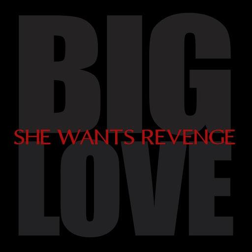 She Wants Revenge альбом Big Love