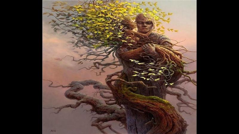 Доказательства того, что деревья обладают сознанием.
