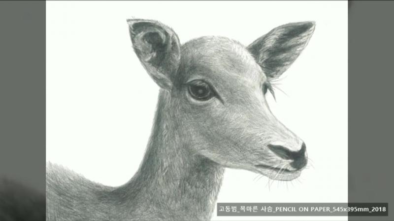 [밀알복지재단]_재능기부로 오디오 가이드에 참여한 NCT(재현 쟈니 유타 쿤)_중국어 가이드 풀 버전
