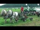 PferdeStark 2017 Präsentation landwirtschaftlicher Zuggeräte sowie Leistungspflügen