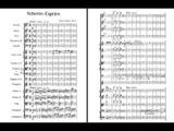Oskar Nedbal - Scherzo-Caprice for orchestra Op. 5 (audio + sheet music)