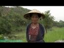 Вершины мира Вьетнам Фаншипан