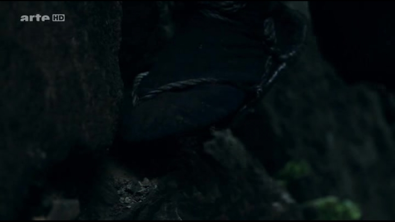 Ninja.voiny.nochi.2011.HDTVRip.[R.G.MEGA BEST]