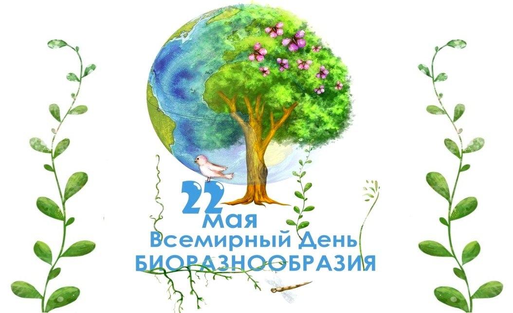 https://pp.userapi.com/c846323/v846323649/541e7/a4_ilDoWvIo.jpg