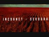 Incognet - Sekouba KAISEN RECORDS