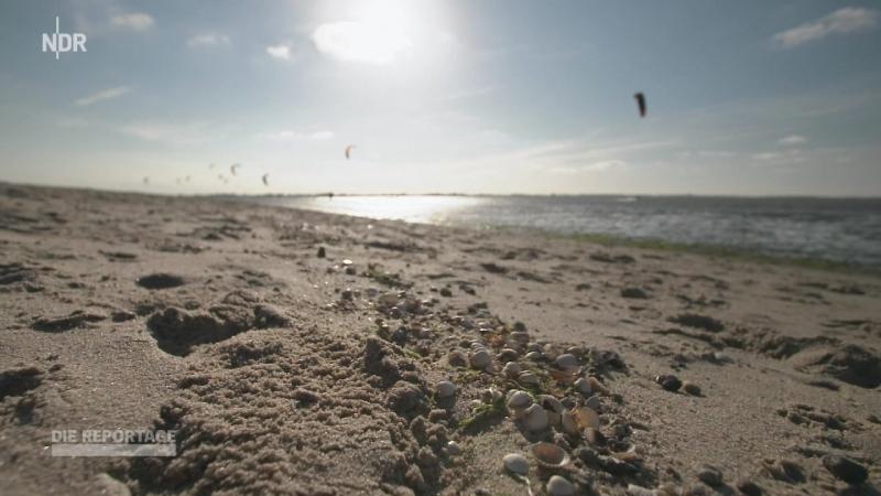 Plastik in Deutschlands Meere-Nur die Hersteller können das ändern