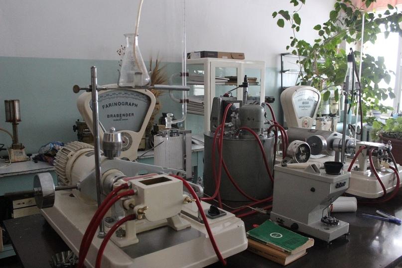 В кабинете технологов трудятся две женщины: научный сотрудник Людмила Викторовна Маленкова и лаборант-исследователь Валентина Алексеевна Аксанова.