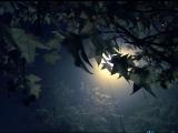 # Гори гори, моя звезда(аудио) - Трио Реликт #